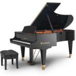 Najam klavira Euro-Unit (Bösendorfer Standard 225)